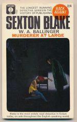 Murderer at large
