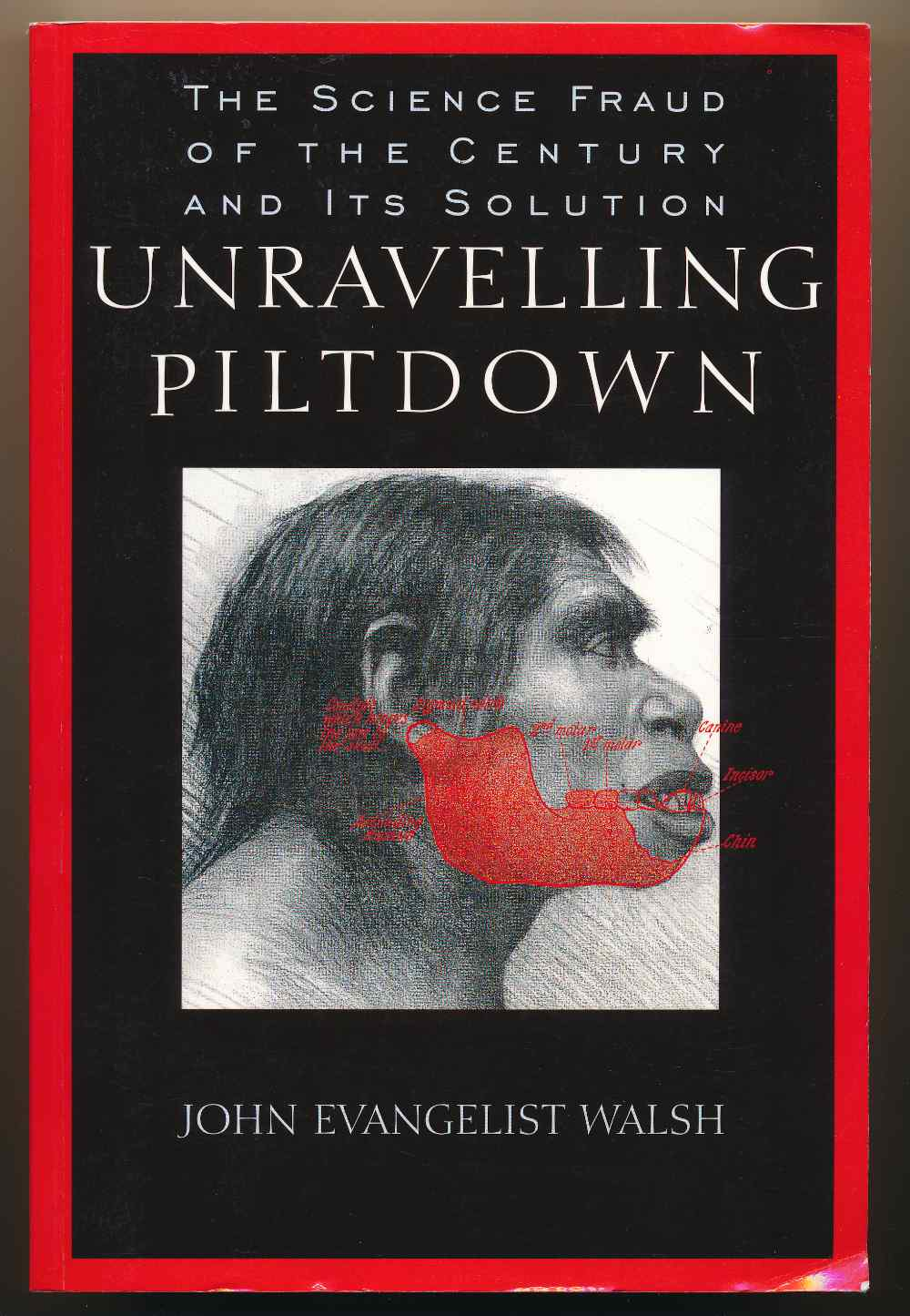 Unravelling Piltdown : the science fraud of the century and its solution